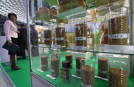 На открытии Второго Всемирного зернового форума в главном медиацентре на территории Олимпийского парка.