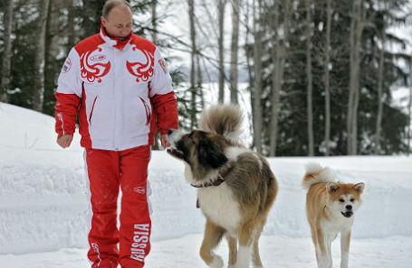 Владимир Путин на прогулке со своими собаками болгарской овчаркой Баффи и акита-ину Юмэ.