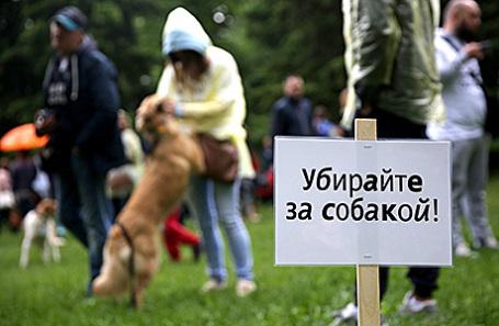 Хозяев собак будут облагать штрафом занеубранные экскременты животных
