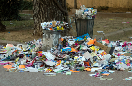 Вывозом мусора изПушкино займутся компании «ЭКО» и«Экологический патруль»