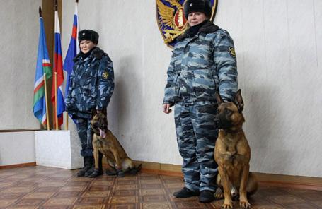 Клонированные вЮжной Корее овчарки будут охранять злоумышленников вЯкутии