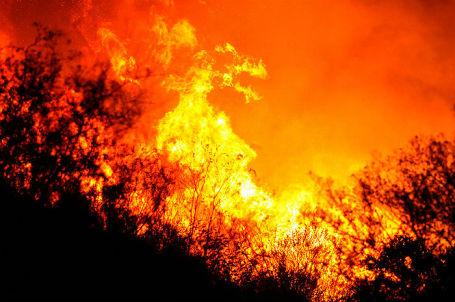 В Калифорнии из-за природных пожаров объявлено чрезвычайное положение.