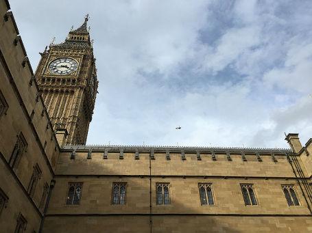 Вид с территории Британского парламента.