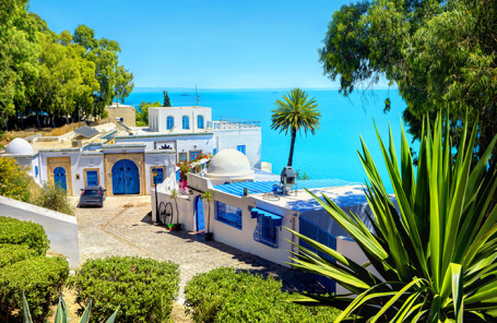 Вид на курортный город Сиди-Бу-Саид, Тунис.