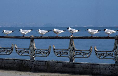 Вид набережной Каспийского моря.