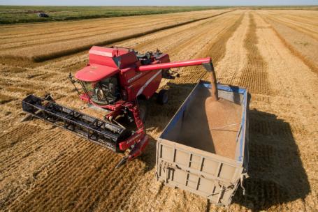Регионы выступают заприостановку экспорта зерна. ожидатьли изменений?