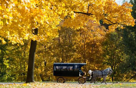 Осень в парке «Коломенское» в Москве.