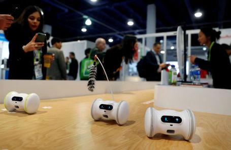 Фитнес-робот для питомцев на CES 2019.