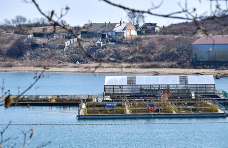 Вид на «китовую тюрьму» в бухте Средняя.