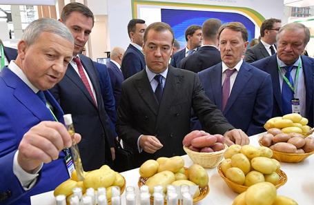 Дмитрий Медведев (в центре) на агропромышленной выставке в Москве.