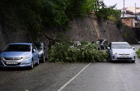 Последствия урагана во Владивостоке.