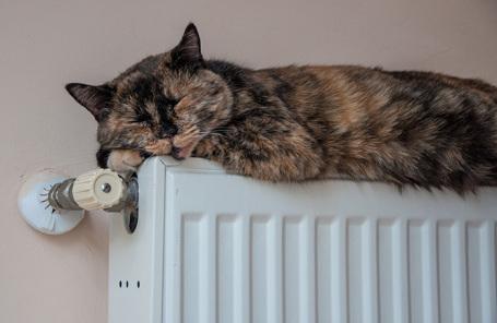 Тепло в дома Москвы начнет поступать с 28 сентября