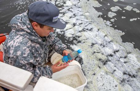 Забор морской воды для анализа на токсичность в бухте Вилючинской Авачинского залива. Камчака.