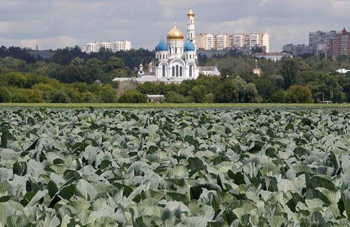 Вид на Совхоз имени Ленина под Москвой, Россия.