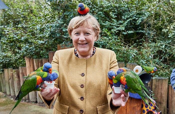 В один из последних дней своего правления в статусе канцлера ФРГ Ангела Меркель отправилась в птичий зоопарк, где покормила разноцветных попугаев лори, а одна из птиц даже разместилась у канцлера на голове. Политик угощала попугаев из бумажных стаканчиков «нектаром Лори» — смесью сухой пыльцы, фруктового сахара, зерна и воды. Канцлеру предложили также подержать филина, однако подойти к птице она не решилась: «Нет, нет, с меня хватит попугаев».