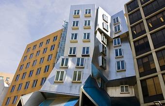Сколково и MIT организуют «циркуляцию мозгов»