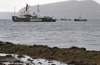Против активистов Greenpeace могут быть возбуждены новые уголовные дела