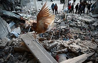 Дамаск сообщил о сотнях погибших от авиаудара. Запад отрицает, РФ не располагает информацией
