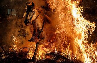 Игры с огнем. Невероятное зрелище фестиваля Las Luminarias