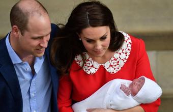 Новичок в королевской семье