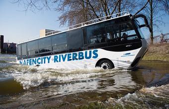 На Москве-реке могут появиться «ихтиандры»