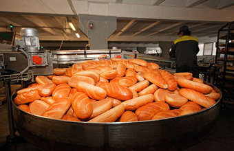 «Директор говорит, что у него денег вообще нет». Рабочие хлебозавода «Черкизово» объявили голодовку