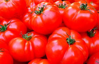 Российские помидоры подешевели: помогли девальвация и урожай