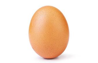 Яйцо и другие самые популярные фото в Instagram