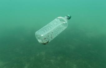 Европейское химическое агентство предложило запретить 90% всего микропластика, используемого в ЕС