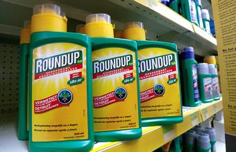 Средство от сорняков «Раундап» могут признать в США провоцирующим онкозаболевания