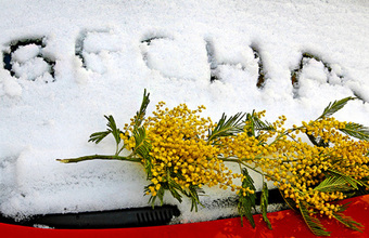 Финальный аккорд зимы