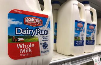 Может ли растительное молоко победить натуральное?