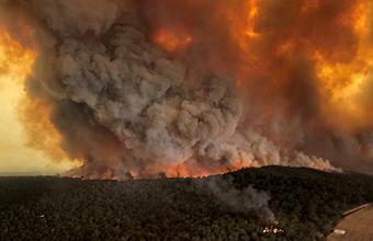 «Картина постапокалиптическая». В Австралии продолжаются лесные пожары