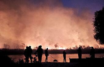 Сильнейшие пожары под Воронежем: прокуратура выясняет причины, в МЧС не исключили поджоги