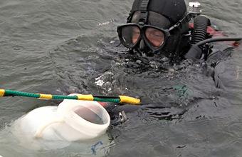 В пробах воды с Камчатки обнаружены нефть и фенол — возбуждены уголовные дела