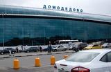 За безопасность в «Домодедово» никто не ответит