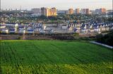 Минюст разглядел коррупцию в выкупе земель «новой Москвы»