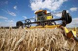 Зерновые интервенции. Попытка победить рекордный урожай