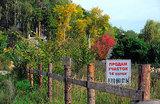 Амнистия в России может пойти лесом