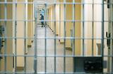 Занявший у Кобзона $25 млн отработает долг в тюрьме