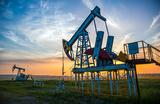 От сокращения добычи нефти странами ОПЕК больше всех выигрывают США?