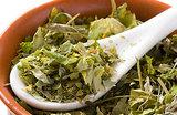 Традиционная медицина признала знахарей и травников