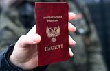 Германия: признание паспортов ДНР — нарушение минских соглашений