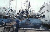 Российский корабль затонул в Черном море: «Была возможность предупредить столкновение»