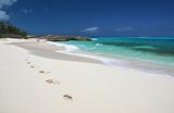 Фестиваль на Багамах обещал быть раем, но стал «голодными играми»
