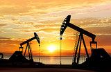 Нефть в тонусе: цены перешли к росту