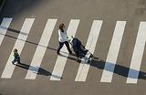 В Петербурге часть пешеходных переходов покраснела