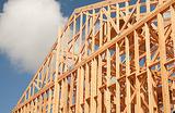 Лесной жилмассив: особенности высотного деревянного домостроения