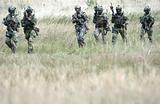 Обзор инопрессы. Наземные французские части на границе России впервые с 1812 года