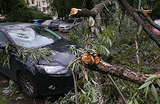 Ураган в Москве: есть погибшие, разрушена пирамида на Новорижском шоссе